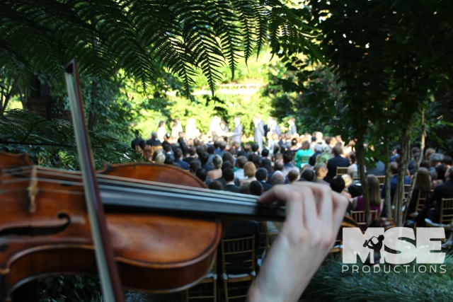 Classic Strings performing for a wedding ceremony