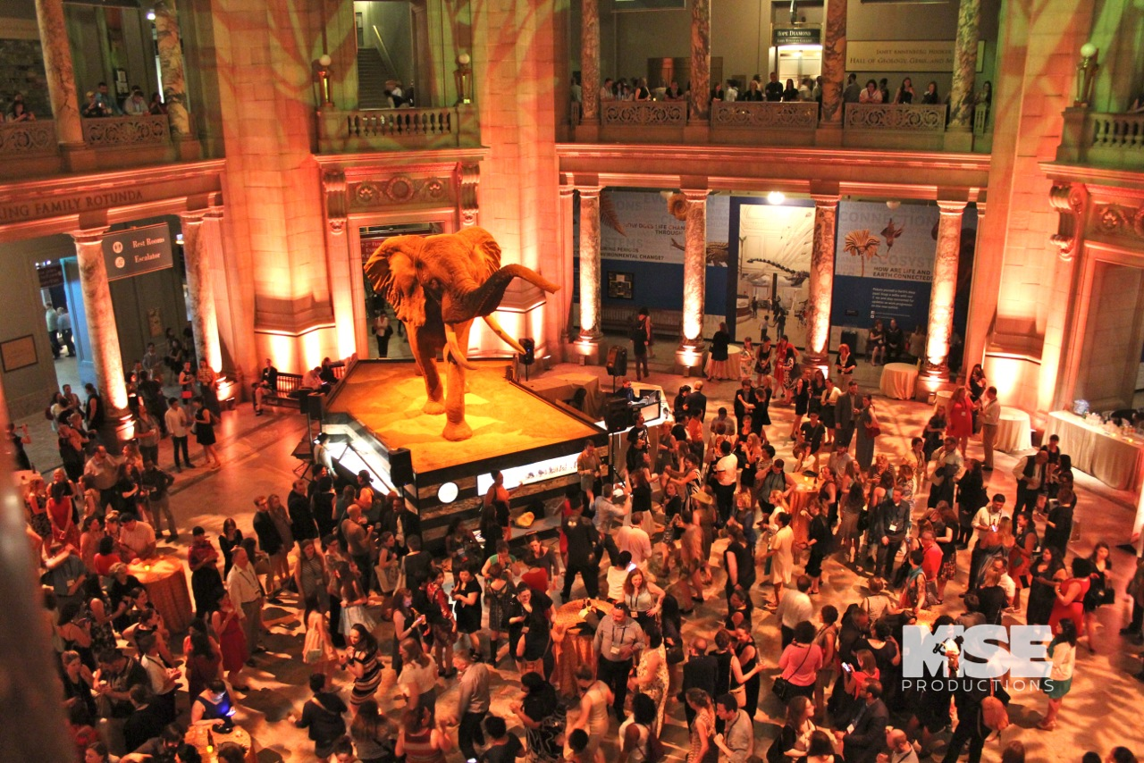 DJ Damon at the Natural History Museum, MSE Productions